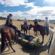 Horse Riding Day Trip